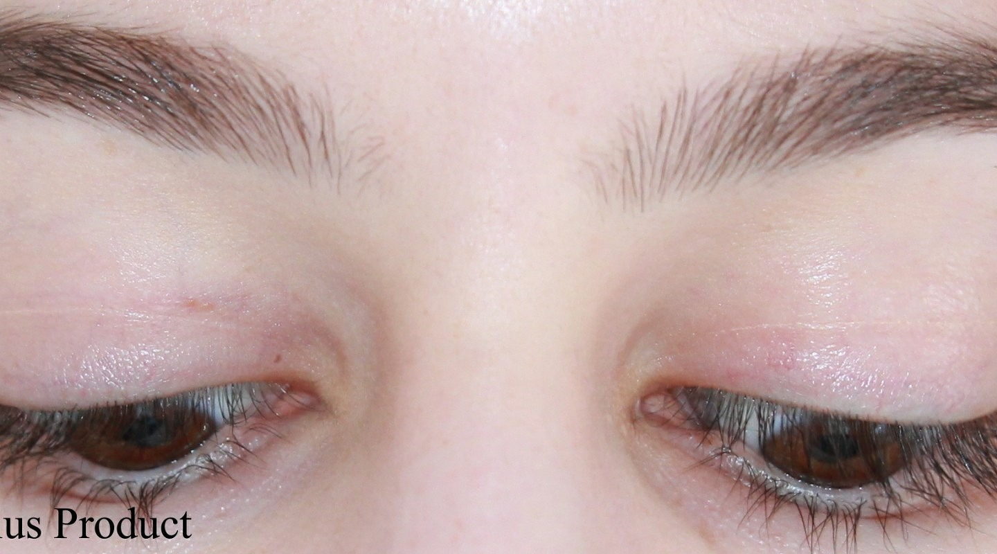 Growing out the Brows: Picture Timeline and Tips